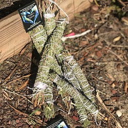 Rosemary Smudge Sticks - $6